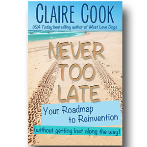 Never Too Late: Your Roadmap to Reinvention (without getting lost along the way) by Claire Cook